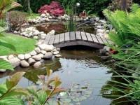 Ландшафтный дизайн: создаём искусственный пруд на даче, 30 фото-идей