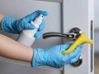 Как защитить дом от коронавируса: правила дезинфекции в домашних условиях
