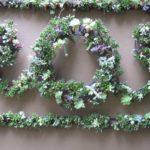 вертикального озеленения дачи - 4