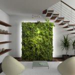 вертикального озеленения дачи - 7