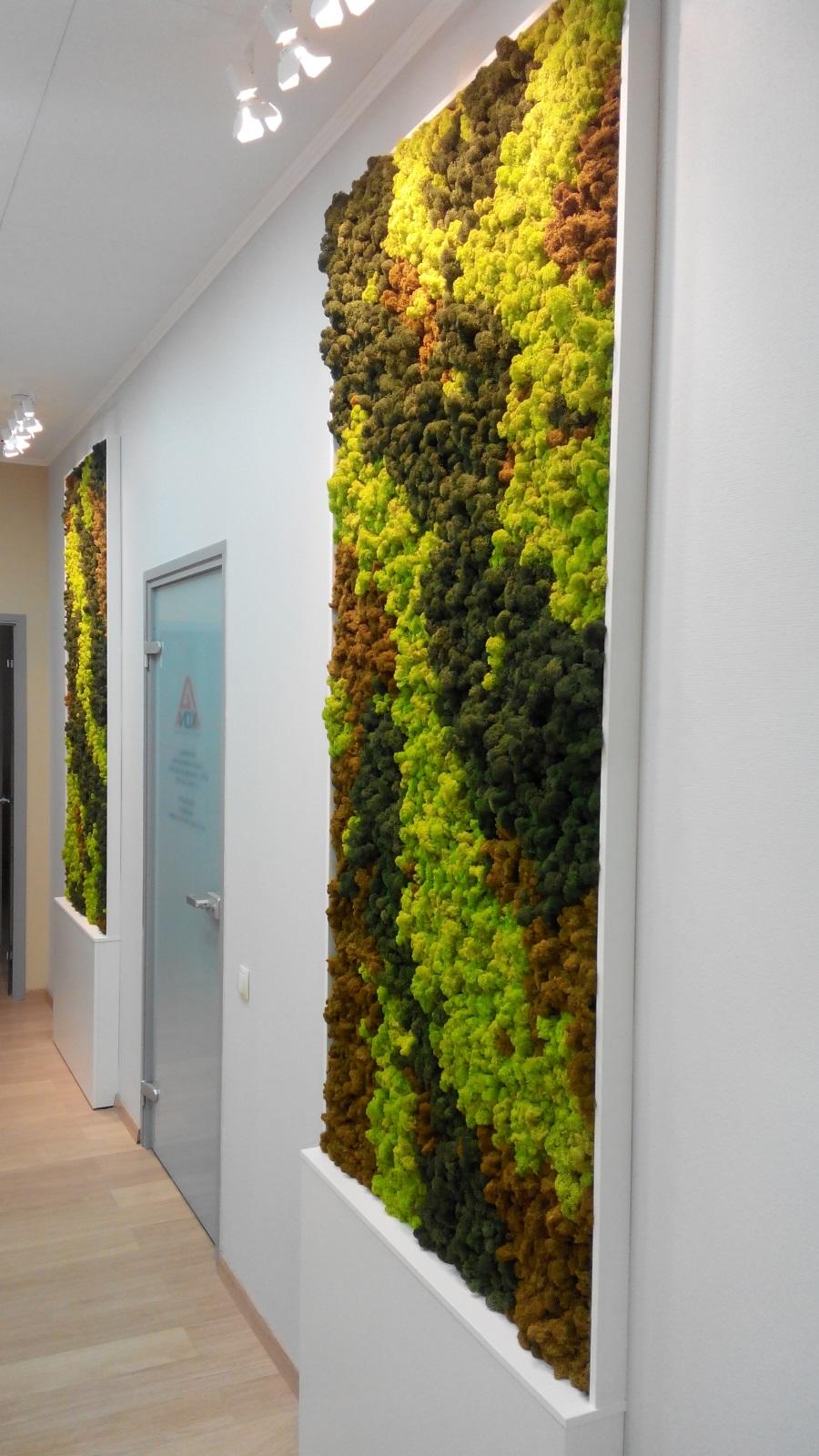 Вертикальное озеленение на даче своими руками - 100 фото идей