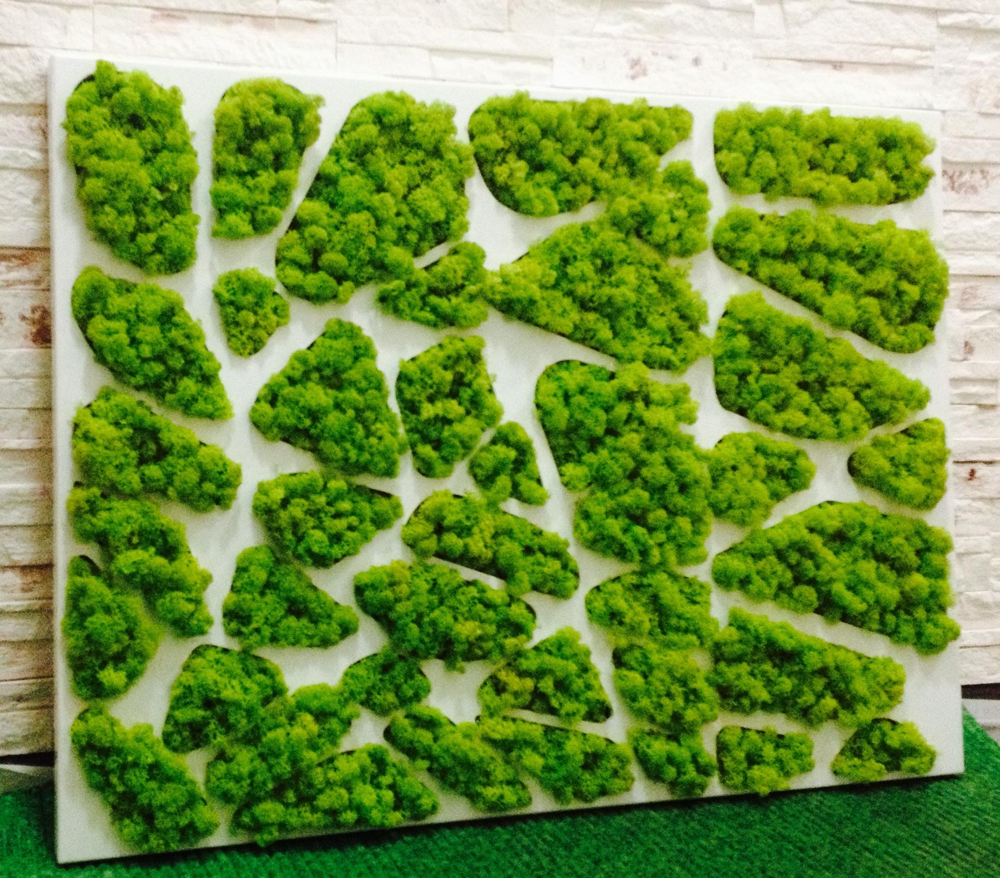 озеленение мохом 7