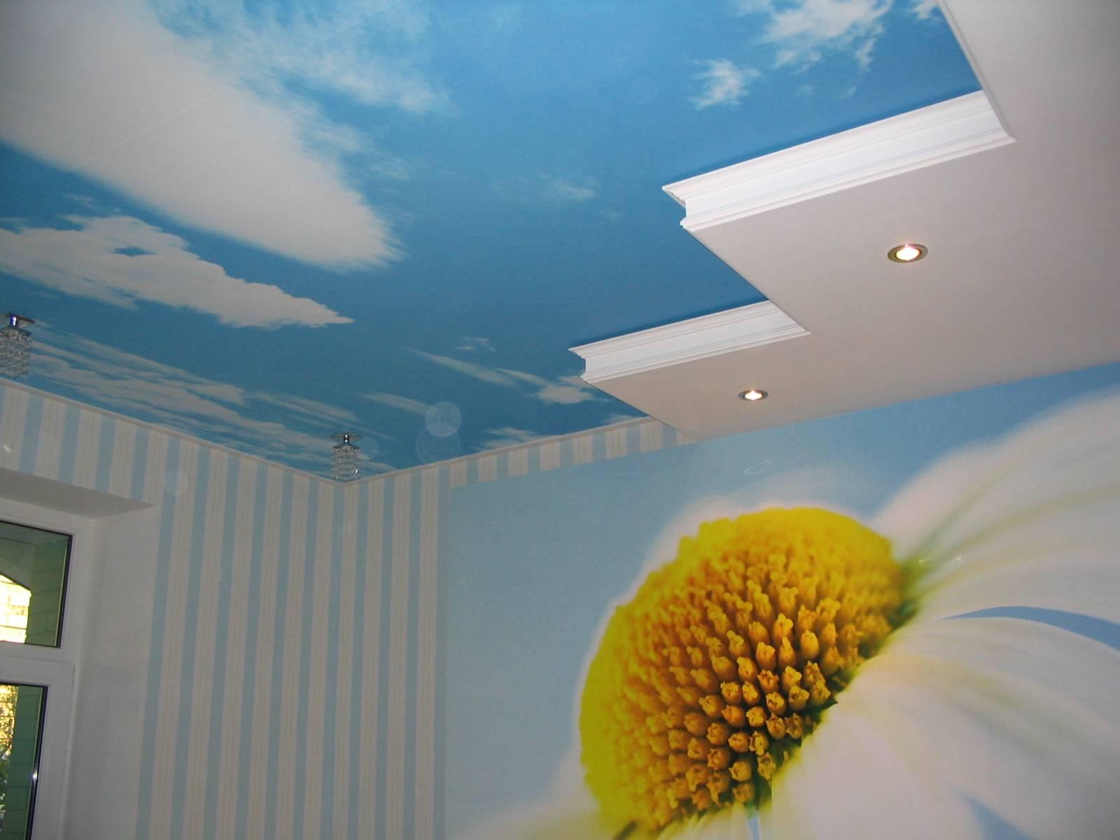 Каким цветом покрасить стены 2