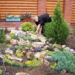 Сад из камней или рокарий