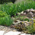 Сад из камней или рокарий 3