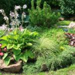 Сад из камней или рокарий 4