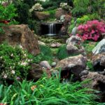 Сад из камней или рокарий 5