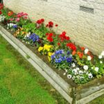 Цветники на даче 3