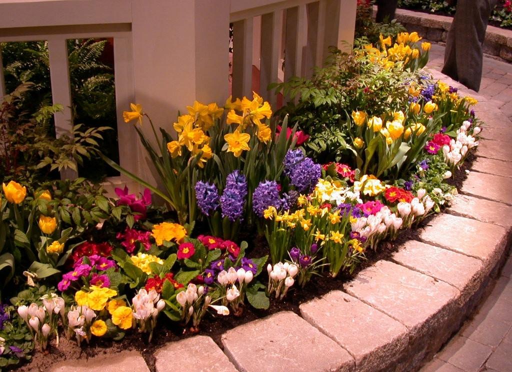 Дизайн клумб из многолетних цветов