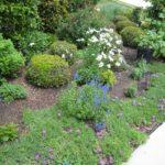 Flower-garden4