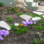 flower-garden-april-07