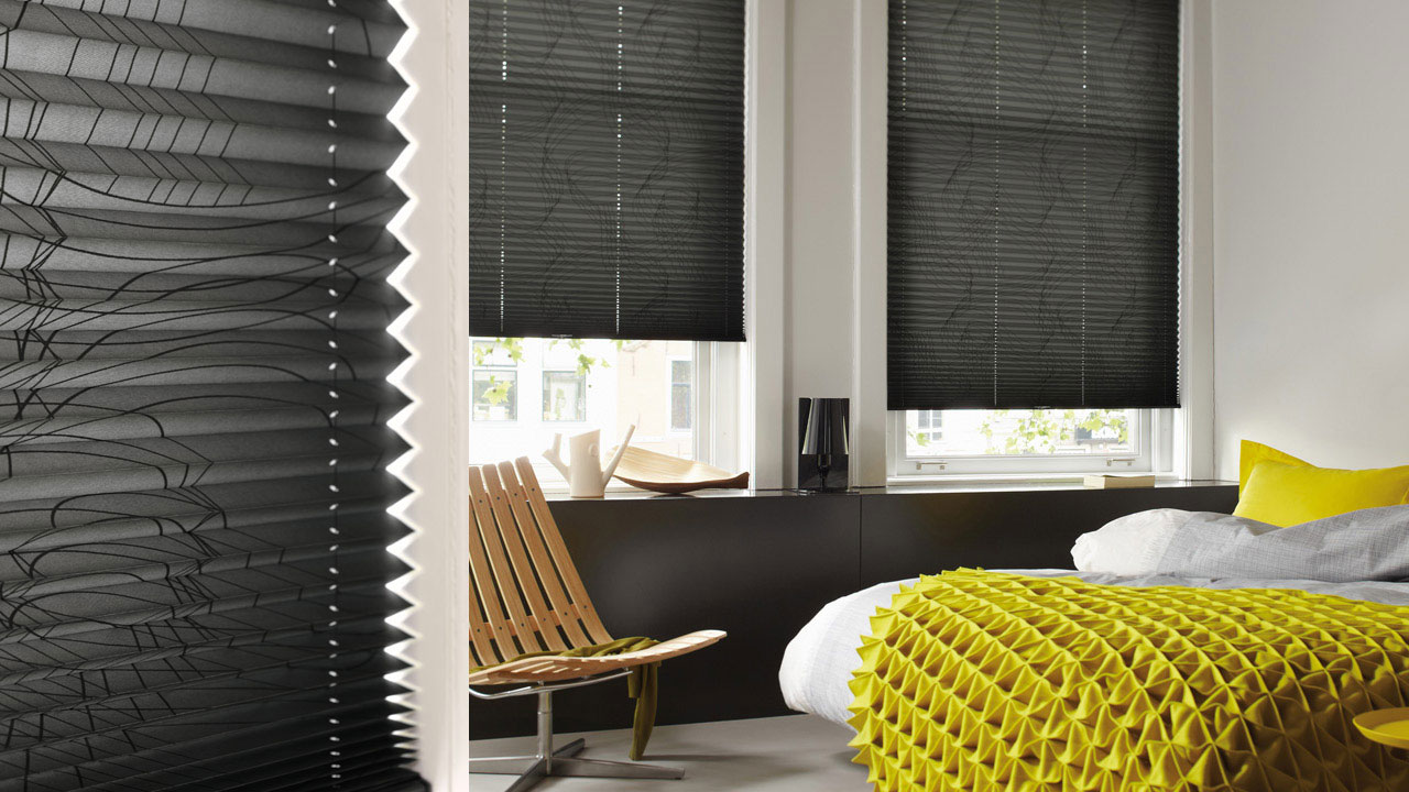 Blinds Pleated 3