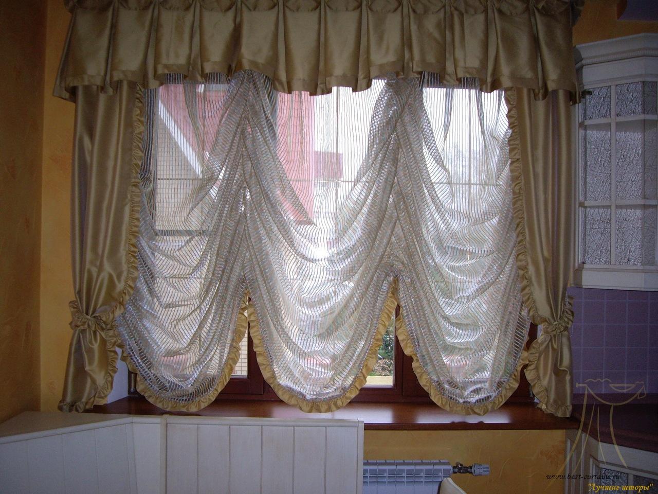 Как развести скалярий в домашних условиях? Частное 2