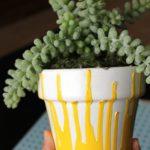 flower-pot-07