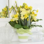 flower-pot-11