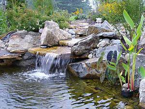Искусственный водоём в ландшафтном дизайне