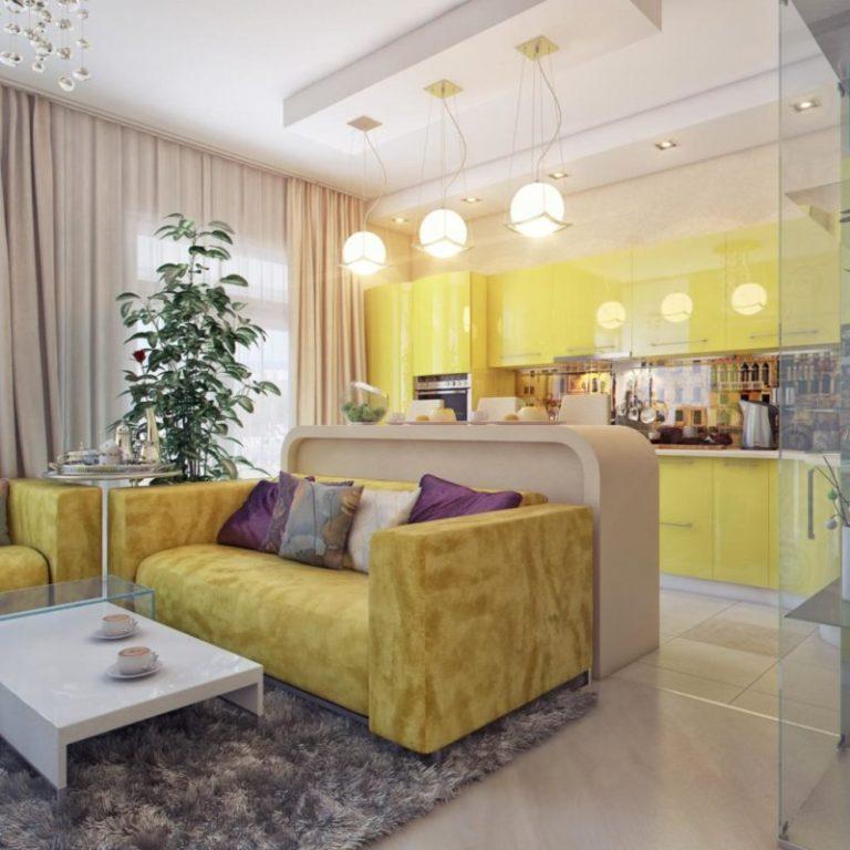 Кухня совмещенная с гостиной дизайн