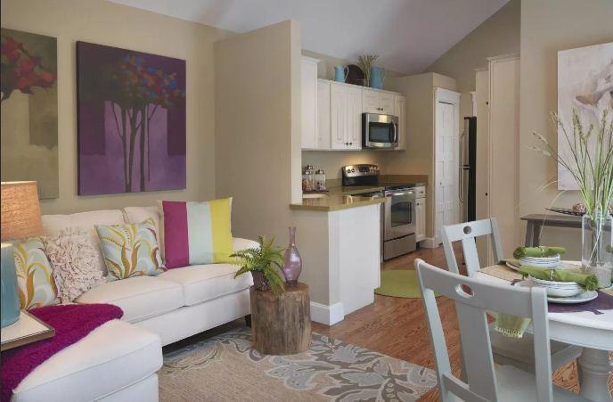 кухня студия с гостиной дизайн фото