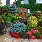сад-на-моем-участке-земли_новый размер