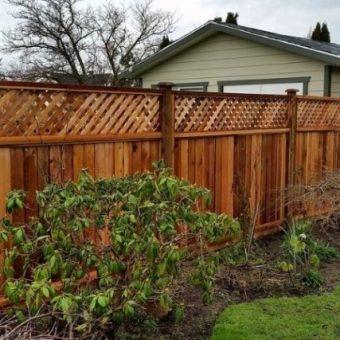 Выбираем распылитель для сада и огорода: полезные советы