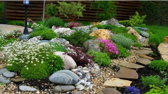 Как сделать рокарий своими руками на даче - фото, лучшие растения